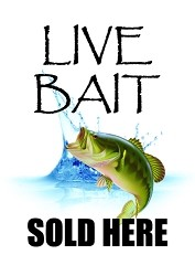 Sqawker Insert - Live Bait